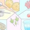 Comment faire de shampooing à base de plantes