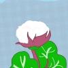 Comment faire des oreillers de sommeil à base de plantes