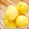 Comment faire de l'huile d'olive de citron