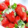 Comment faire de la confiture de fraise simple et fraîche