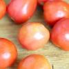 Comment faire de la purée de tomates