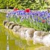 Comment faire de l'eau de votre jardin sage
