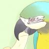 Comment faire votre perroquet se sentir aimé