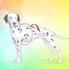Comment mesurer pour chiens manteaux