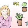 Comment faire pour déplacer des plantes