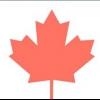 Comment faire un gâteau de drapeau canadien