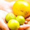 Comment faire un épais smoothie fruité