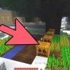 Comment faire un golem de fer dans minecraft