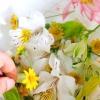 Comment faire votre propre eau florale