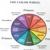 Comment mélanger les couleurs de peinture pour faire brun