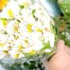 Comment commander des fleurs