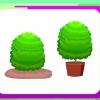 Comment planter buis