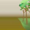 Comment planter jacinthes
