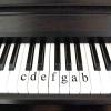 Comment jouer à l'échelle bémol sur le piano