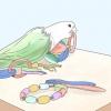 Comment jouer avec un grand perroquet