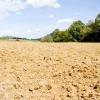 Comment préparer le sol pour un jardin biologique
