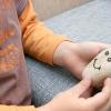 Comment préparer votre pet rock pour un voyage