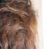 Comment prévenir les cheveux gras