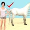 Comment mettre un licol sur un cheval avec la tête frayeur
