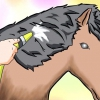Comment mettre une boucle d'apparence naturelle dans les cheveux de votre cheval