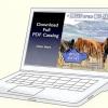 Comment lire, comprendre et utiliser les différences de descendance attendus (epd) chez les bovins