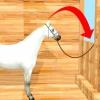 Comment faire pour supprimer le fumier du manteau d'un cheval