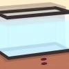 Comment remplacer un aquarium qui fuit