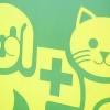 Comment faire pour résoudre les problèmes de chat litière
