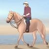 Comment monter un cheval sur la plage