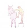 Comment monter un cheval (les bases)