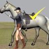 Comment monter un cheval sans étriers