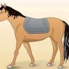 Comment seller un cheval ouest