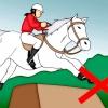 Comment sauter un cheval en toute sécurité en hiver