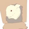 Comment mettre en place un environnement ludique dans la cage d'un lapin
