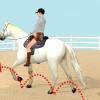 Comment passer un galop à cheval