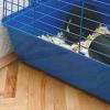 Comment arrêter un lapin d'éternuements