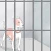Comment arrêter chiens hurlants