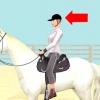 Comment prendre votre première leçon de l'équitation