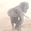 Comment survivre à un éléphant de charge