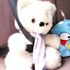 Comment prendre votre ours en peluche sur les longs trajets