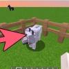 Comment apprivoiser et élever un chien sur minecraft