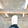 Comment apprendre à un chat à grimper à une échelle