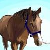 Comment apprendre à un cheval à l'arc