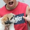 Comment enseigner à votre chien un nouveau tour