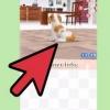 Comment utiliser action replay avec nintendogs