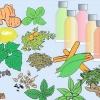 Comment utiliser l'aromathérapie pour la fatigue