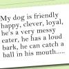 Comment écrire un discours au sujet de votre chien pour montrer et dire