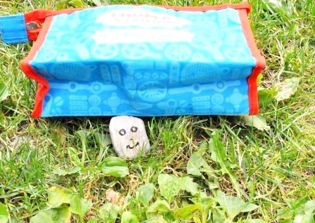 Take Your Pet Rock Camping Étape 4.jpg